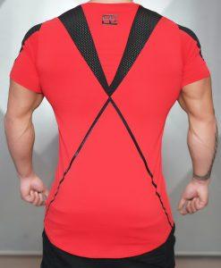 xa1 T red back